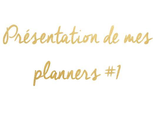 presentation_planner_1_une